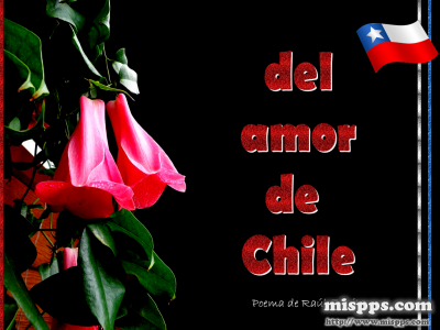 Linea, chile, aPK download